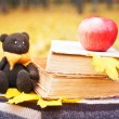 Bear, apple and books on a bench in the park...