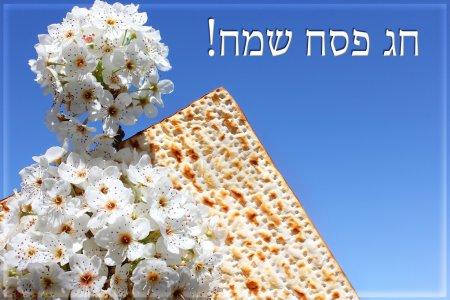 Photo pour Vacances juives de la Pâque, branche d'un arbre en fleurs et matzo sur le fond du ciel bleu vif avec une inscription en hébreu - Joyeuse Pâque - image libre de droit
