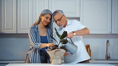 Photo pour Homme âgé arrosage plante près heureux asiatique femme dans cuisine - image libre de droit