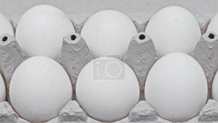 close up view of chicken eggs in cardboard egg tray