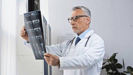 Photo pour Médecin mature dans les lunettes de vue regardant la radiographie à l'hôpital - image libre de droit