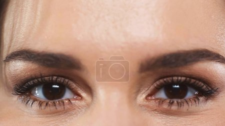 partial view of woman with brown eyes looking at camera