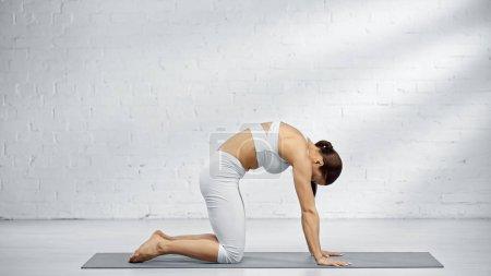 Photo pour Vue latérale de la femme pratiquant la pose de yoga vache - image libre de droit