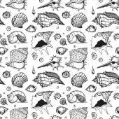Seamless pattern of Sea shells