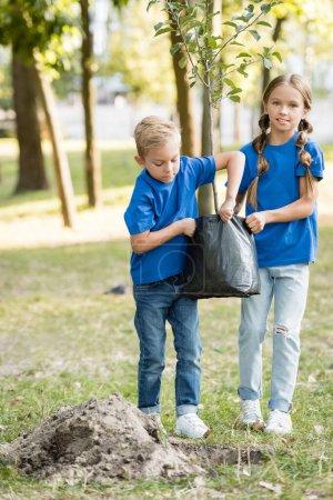 Foto de Hermano y hermana llevando plántulas jóvenes en el parque, concepto de ecología - Imagen libre de derechos