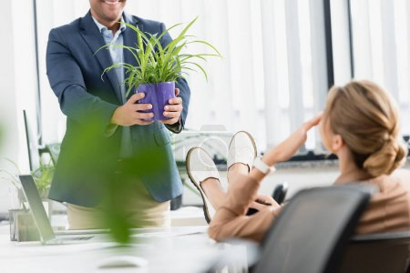 Smiling businessman holding plant near female colleague with crossed legs, standing near workplace on blurred foreground