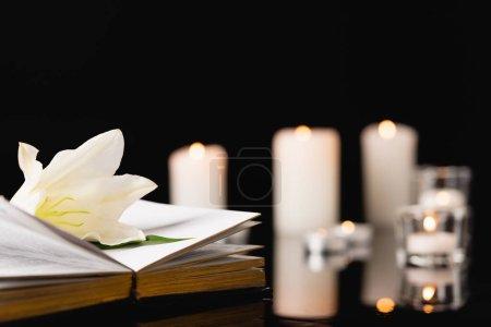 Photo pour Lys sur la bible sainte sur fond flou, concept funéraire - image libre de droit