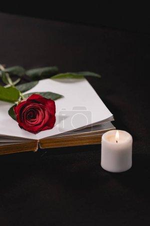 Photo pour Rose rouge sur la sainte bible près de la bougie sur fond noir, concept funéraire - image libre de droit
