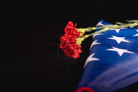 Photo pour Drapeau américain oeillet rouge sur fond noir, concept funéraire - image libre de droit