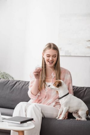 cheerful woman feeding jack russell terrier with pet food in living room