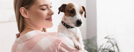 Photo pour Jeune femme gaie tenant dans les bras jack russell terrier dans le salon, bannière - image libre de droit