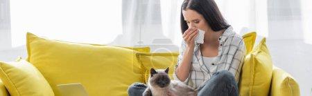Photo pour Femme allergique éternuer dans une serviette en papier tout en étant assis sur le canapé avec chat, bannière - image libre de droit