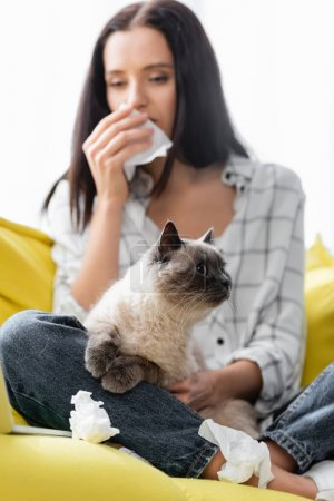 selective focus of cat near allergic woman wiping nose with paper napkin on blurred background