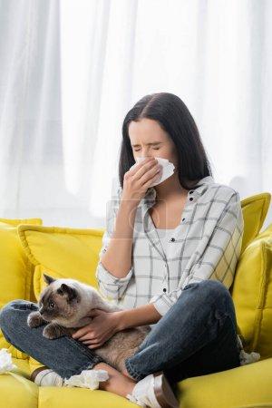 Photo pour Jeune femme éternuer dans une serviette en papier tout en étant assis sur le canapé avec chat et souffrant d'allergie - image libre de droit