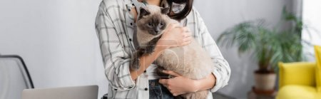 Photo pour Partial view of woman holding fluffy cat at home, banner - image libre de droit