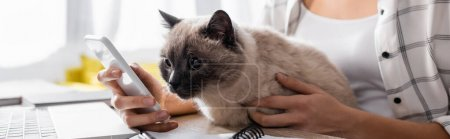 Photo pour Cropped view of freelancer chatting on smartphone while holding cat, banner - image libre de droit