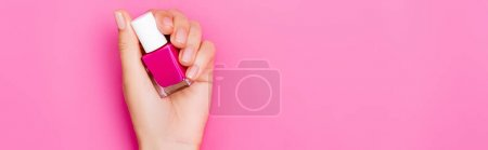 top view of groomed female hand with bottle of glossy nail polish on pink background, banner