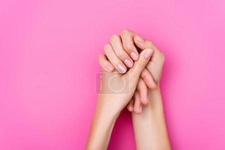 Photo pour Vue du haut des mains féminines avec vernis pastel sur les ongles sur fond rose - image libre de droit
