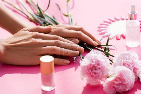 vista recortada de manos femeninas cerca de flores de clavel, botellas de esmalte de uñas y removedor de cutículas, y paleta de uñas falsas en rosa