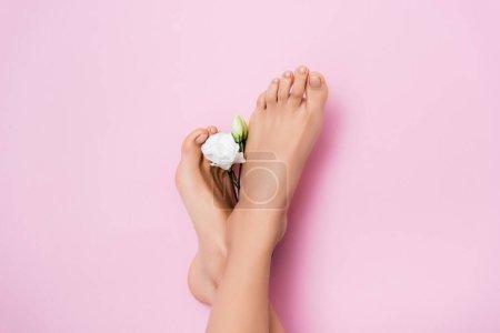 vista superior de los pies femeninos con pedicura brillante cerca de flor de eustoma blanco sobre fondo rosa