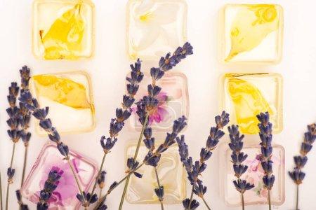 Photo pour Vue de dessus des fruits transparents et des glaçons floraux avec des fleurs de lavande sur fond blanc - image libre de droit