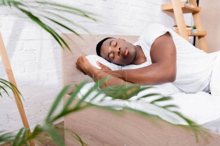 African american man sleeping on bed near plant on blurred foreground