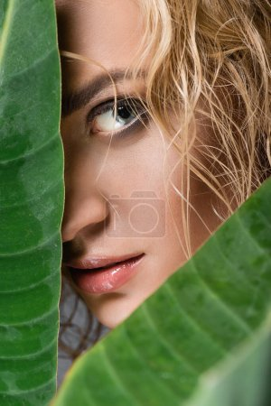 closeup of blonde woman with wet hair and green leaves