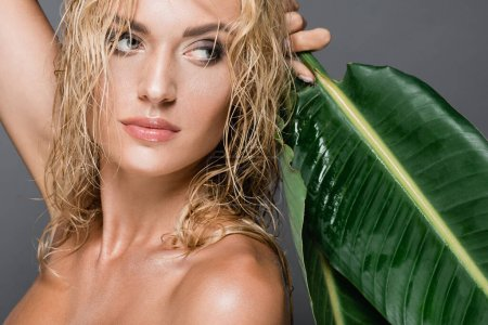 Photo for Blonde woman with wet hair and green leaf isolated on grey - Royalty Free Image