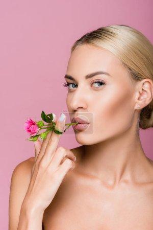 schöne blonde Frau mit perfekter Haut und Rosenblüte isoliert auf rosa