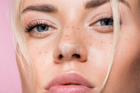 closeup of beautiful blonde woman with freckles isolated on pink