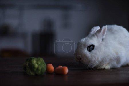cute rabbit with black eye near carrot and broccoli