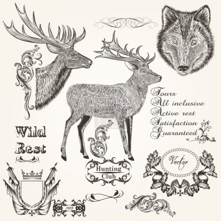 Set of vector hand drawn animals hunting season design
