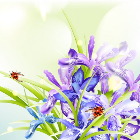 Illustration for Background with blue and purple irises for design - Royalty Free Image