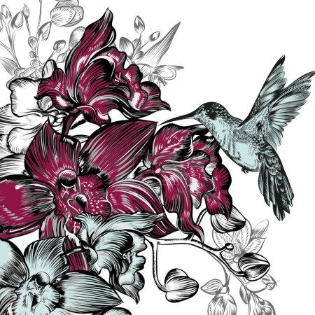 Illustration pour Fond avec orchidées et colibri - image libre de droit