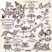 Vector set of calligraphic elements for design Calligraphic vec