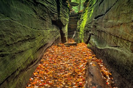 Photo pour A narrow rock crevice with green walls and a floor covered with autumn leaves in Ohio's Cuyahoga Valley National Park. - image libre de droit