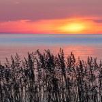 The sun rise over Lake Michigan silhouetting wild ...