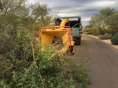 Photo pour Branches d'arbre paysagistes à l'aide de machine broyeur pour enlever et transporter la scie à chaîne - image libre de droit