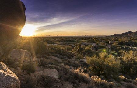 Desert sunset cactus landscape, Arizona,USA