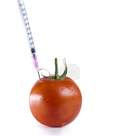 Genetically engineered food concept image