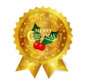 Vánoční medaile rámec