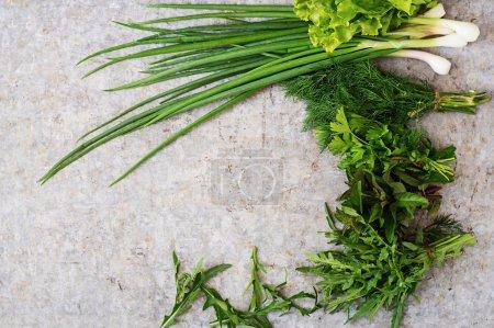 Variety of fresh organic herbs