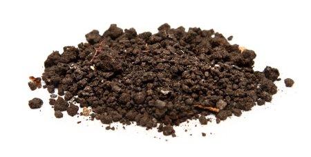 Handful of soil