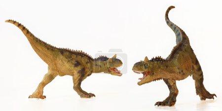 A Carnotaurus Dinosaur Duel, Meat Eating Bulls