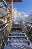 The observation tower on a hill in the winter forest