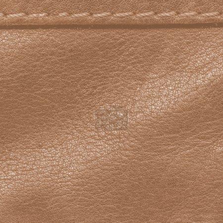 Photo pour Fond cuir marron, couture - image libre de droit
