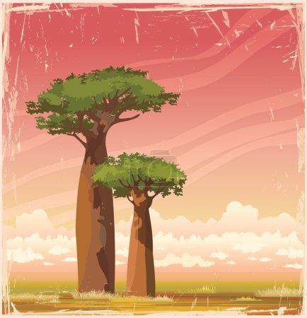 Madagascar baobabs and sunset sky