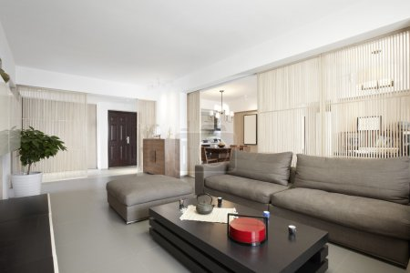 Elegant and comfortable home interior ,living room