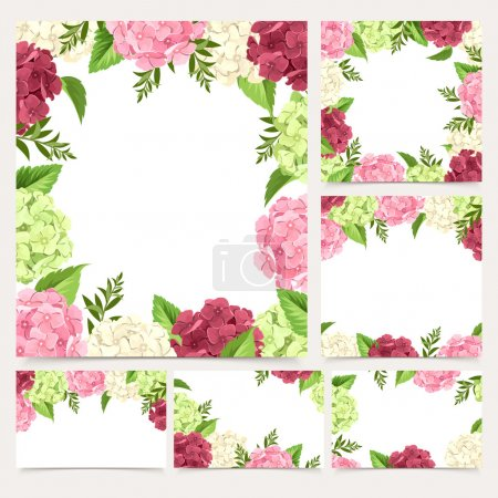 Set of greeting or wedding cards with hydrangea flowers. Vector eps-10.