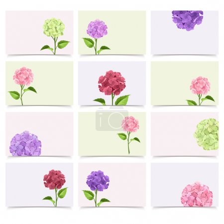 Set of greeting cards with hydrangea flowers. Vector eps-10.